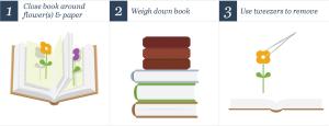 Book method
