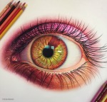 7-eye-color-pencil-drawing-by-morgan-davidson